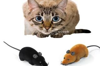 Cica játékok szobatigriseknek